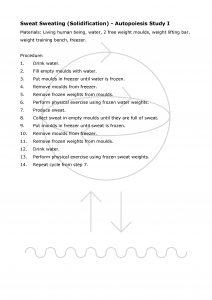 Autopoiesis Study I